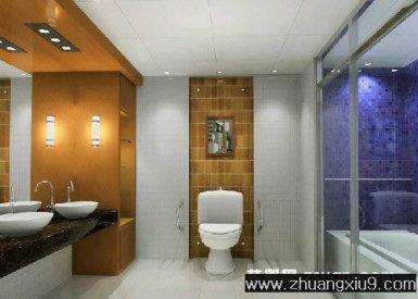 卫生间装修图片中户型暖色马桶